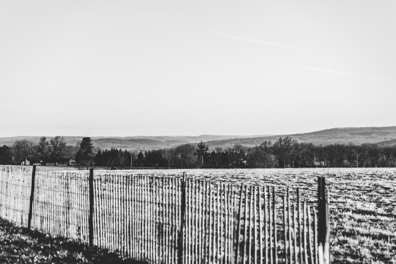 Hilltops - Early Morning